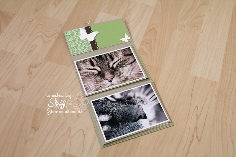 Tutorial - Fotoalbum - Kater Krümel 2