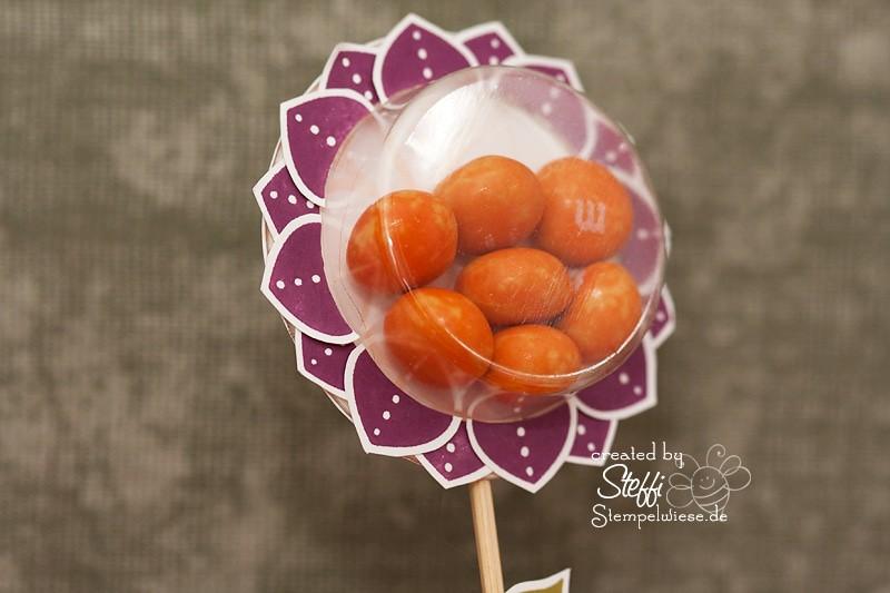 Süßes Blümchen mit süße Kleinigkeiten