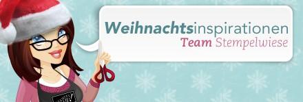 Weihnachtsinspirationen vom Team Stempelwiese - Verpackung 1
