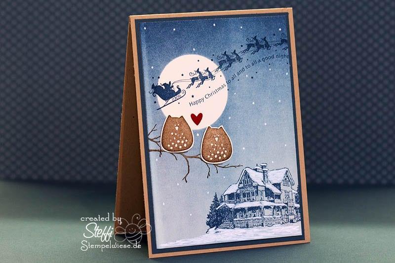 Weihnachtskarte mit Eulen 1