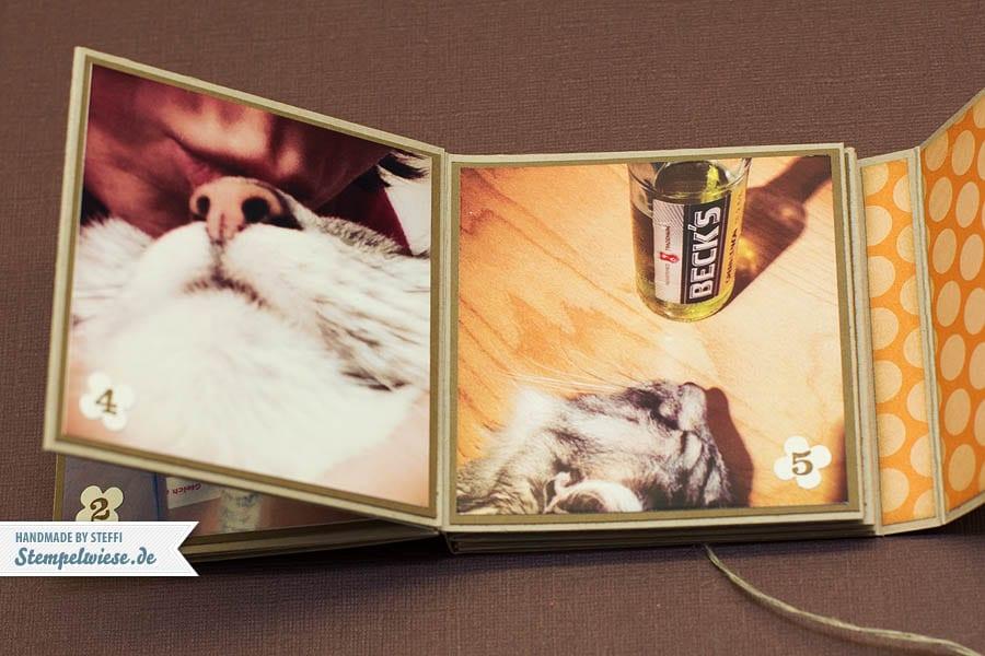 Minialbum - Fellpopo Rico 5