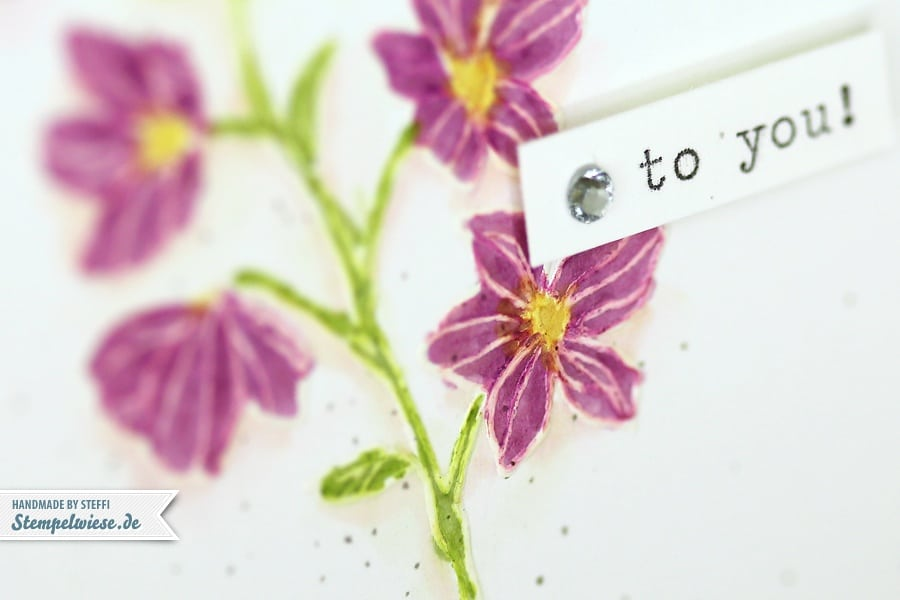 stampin-up-geburtstagskarte-clean-simple-peaceful-petals-blendabilities-24062014