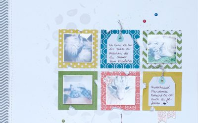 Scrapbook mit Kartenset Für viele Anlässe – 2