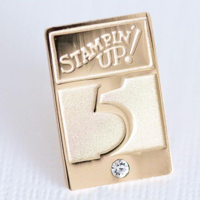 So ganz offiziell mit Nadel und Brief <3 hätte ich vor 5 Jahren nie gedacht! #stampinup #5jahredemontrator #jubilaeum #stempelwiese