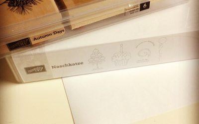 Holzstempel in DVD Boxen umsetzen