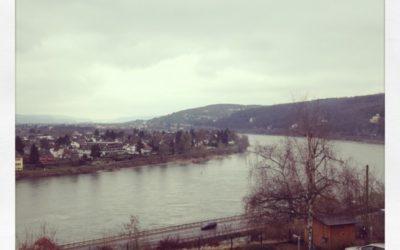 Bericht über Crop am Rhein 2013