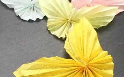 Es regnet schon den ganzen Tag, da kommen die Schmetterlinge gerade richtig ️