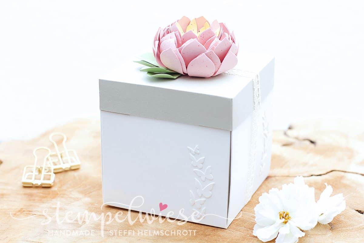 Explosionsbox Sukkulente - Origami Geldschein - Geldgeschenk - Box in a Box