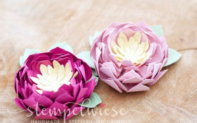 Video – 3D Seerose aus Papier