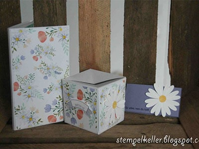 Waltraud Hattinger - Verpackung
