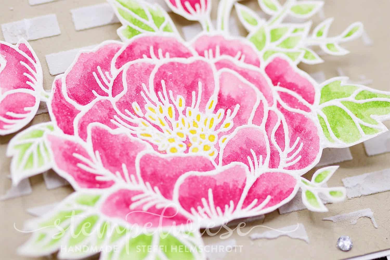 Kolorieren mit 3D Effekt - Videoanleitung - Stampin' Up! - Stempelwiese - Aquarell - Geburtstagsblumen