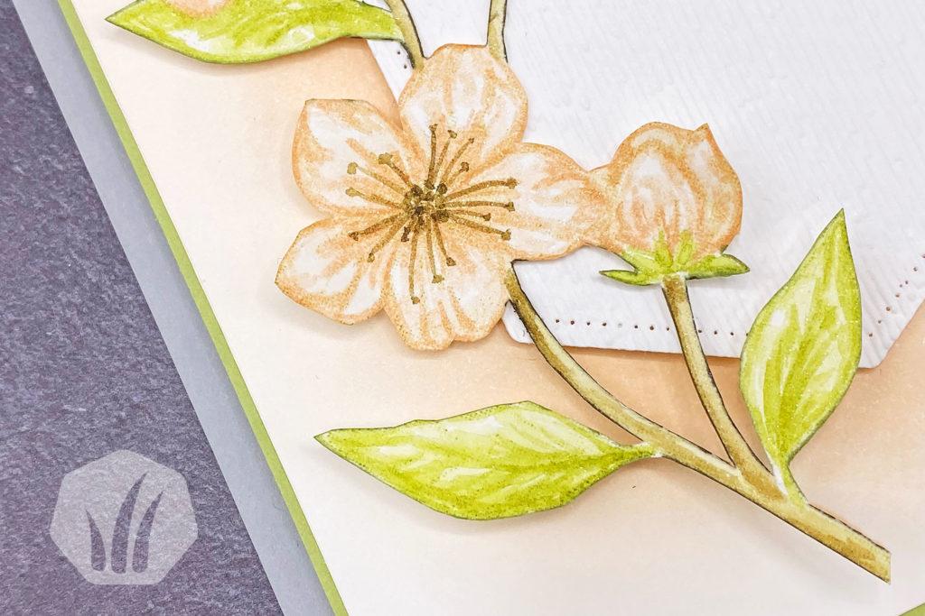 Grußkarte mit Kirschblütenzweig 1